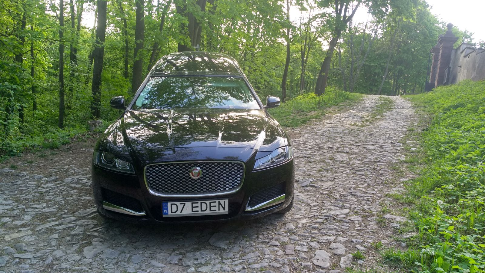 karawan Jaguar